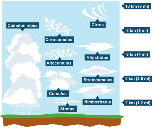 Bbc ks3 bitesize geography weather and climate revision bbc ks3 bitesize geography weather and climate revision page 5 ccuart Images