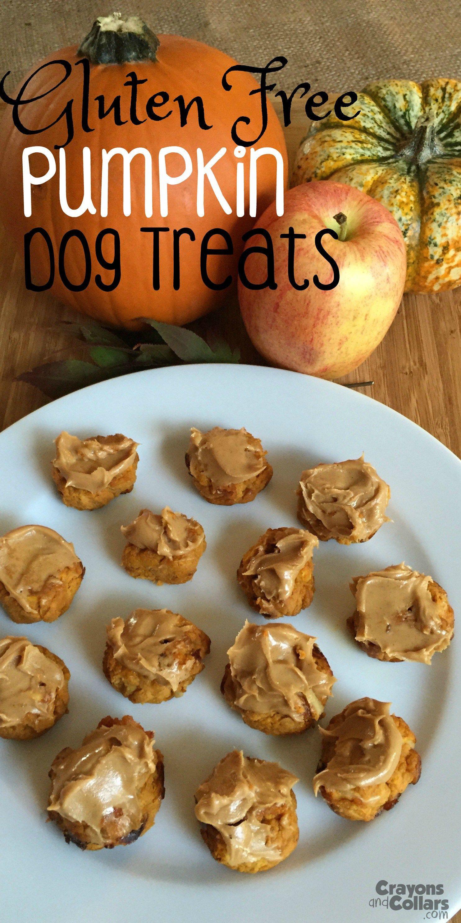 Easy gluten free pumpkin dog treats gluten free dog