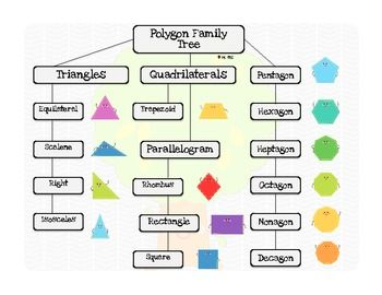 2d shape poster polygon family tree flow chart freebie math 2d shape poster polygon family tree flow chart freebie ccuart Choice Image