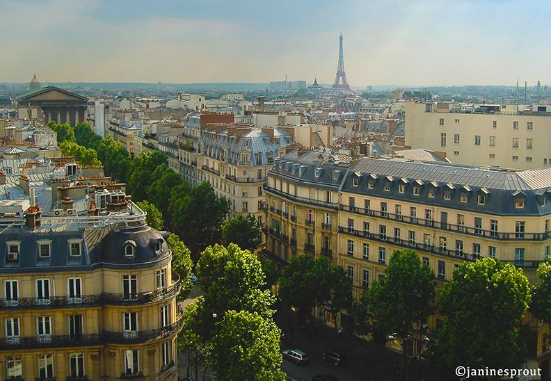 If you detest standing in line or just being in crowded places your timing to go to Paris has never been better. Visibly noticeable are the shortened queues at the Louvre, Musee d'Orsay, Ei…