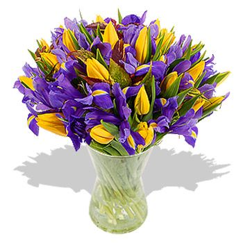 Purple Iris Yellow Tulips Bouquet Wedding Arch Flowers Blue Wedding Flowers Cheap Wedding Flowers