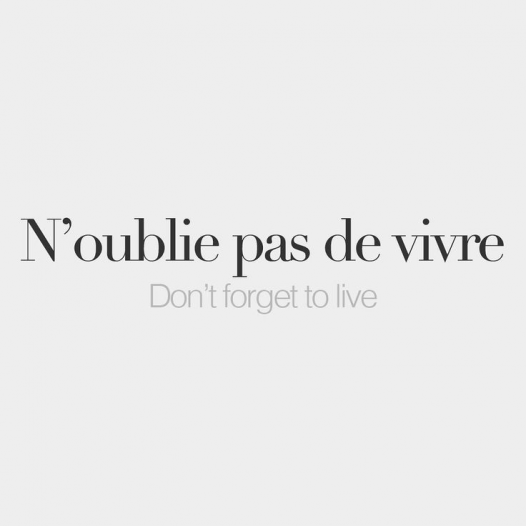 N Oublie Pas De Vivre Beautifulwords Beautiful Words In Other Languages French Words Quotes French Tattoo Quotes French Quotes