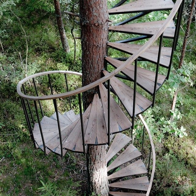 Spiral Staircase With Images Tree House Designs Tree House Stairways