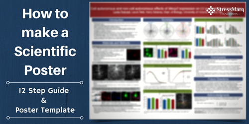 how to make a scientific poster 12 step guide and poster template