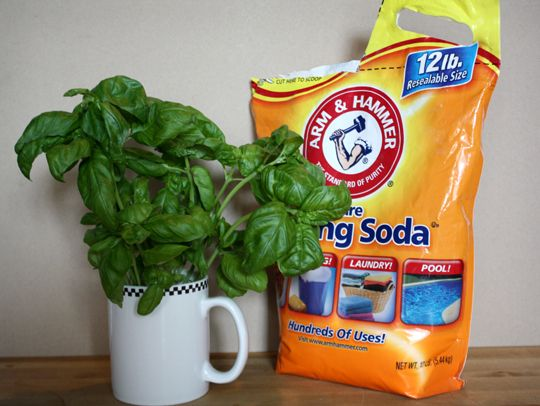 Skip The Fabric Softener How To Make Scented Laundry Booster