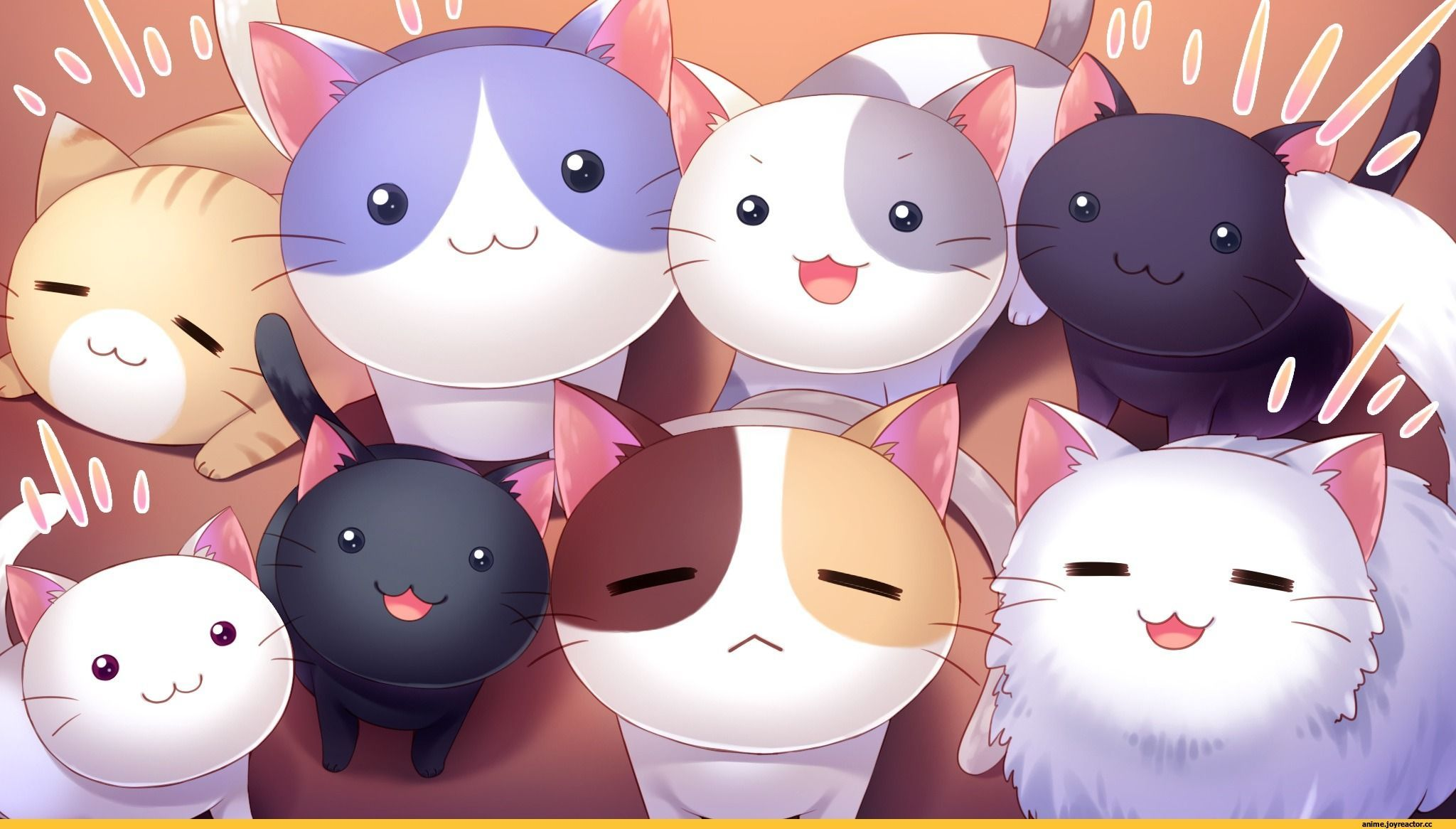 Anime Cute Anime Google Backgrounds Cute Anime Cat Anime Wallpaper Cute Anime Wallpaper