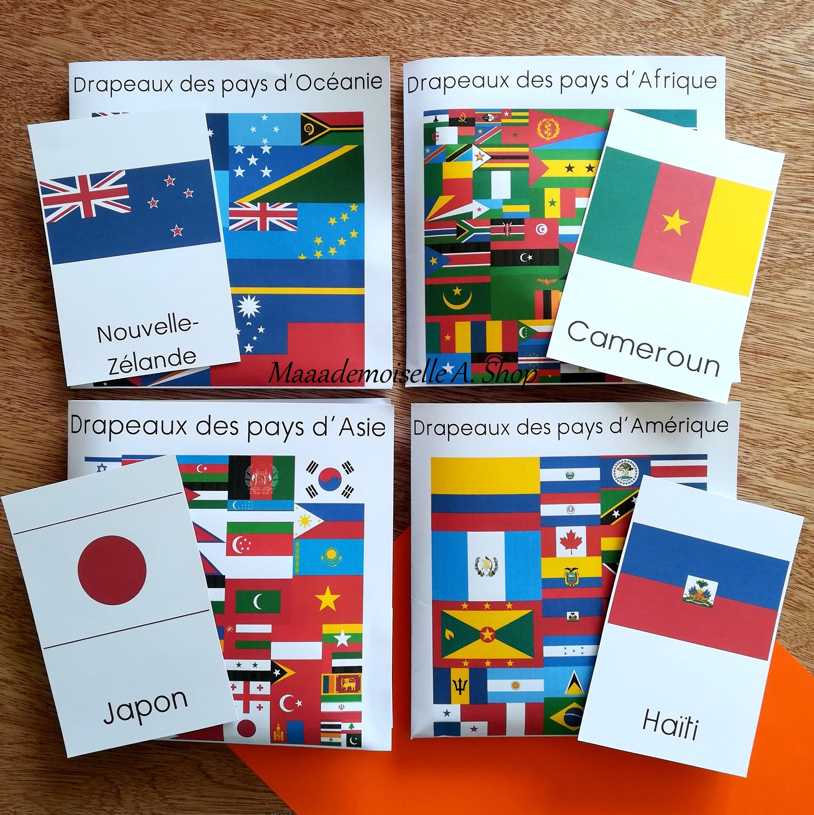 Cartes De Nomenclature Drapeaux Des Pays D Oceanie D Afrique D Asie Et D Amerique Carte Afrique Drapeau Pays Pays Afrique