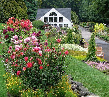 Visit White Flower Farm Plant Nursery White Flower Farm Cottage Garden White Flower Farm Farm Gardens