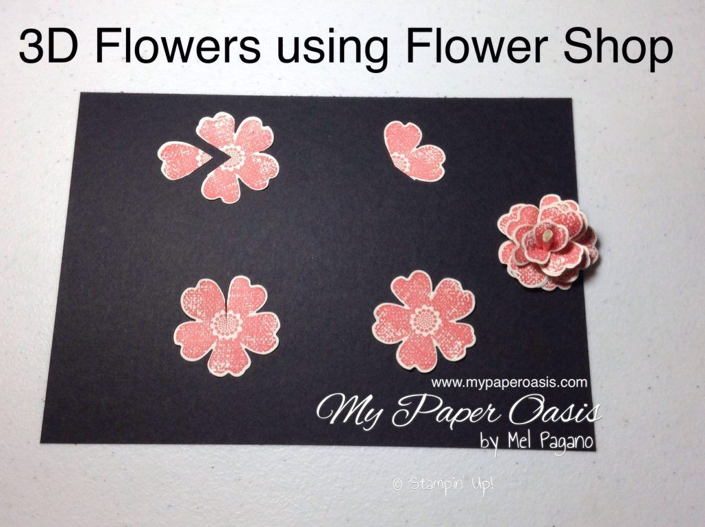 How to create stunning 3d flowers using the flower shop stamp and how to create stunning flowers using the flower shop stamp and pansy punch by my paper oasis stampin up mightylinksfo