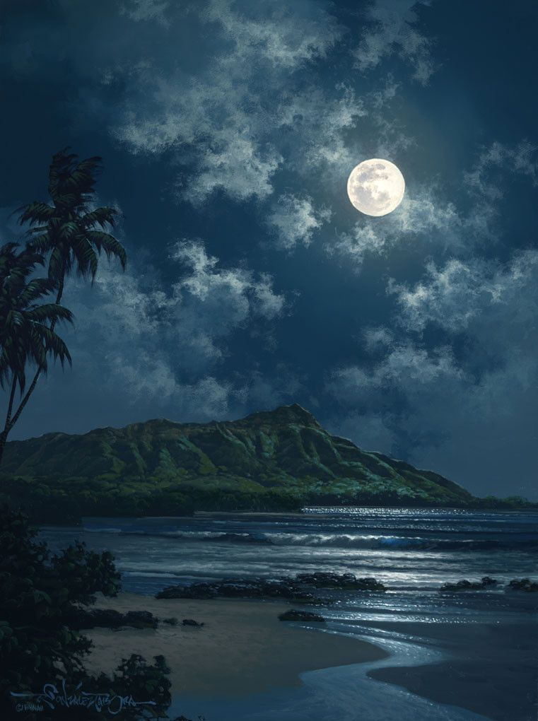 Waikiki Night Sky | Night skies, Size 16 and Moon