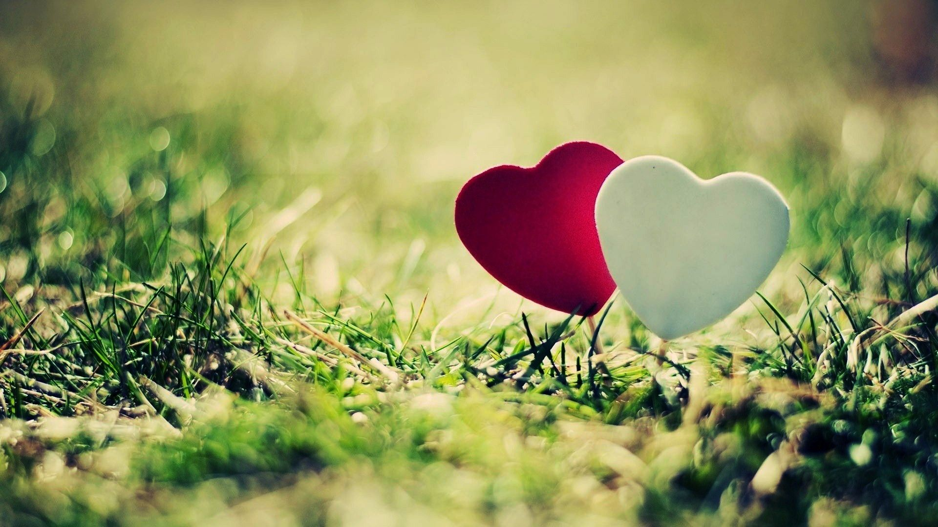 Beautiful Love Wallpaper Hd: Love And Heart Wallpapers Free Download HD Latest
