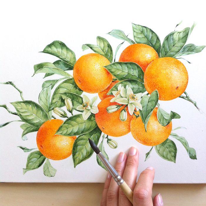 Olive Cherry Orange Strawberry On Behance Botanical IllustrationWatercolor