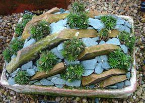 another mini rock garden idea | Home Sweet Home | Pinterest | Garden ...