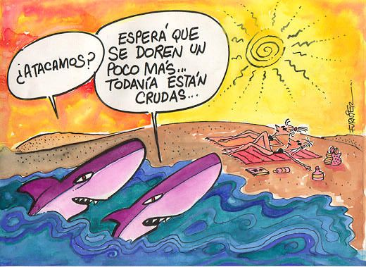 Playa Tiburones Spanish Humor Spanish Teacher Humor Humor