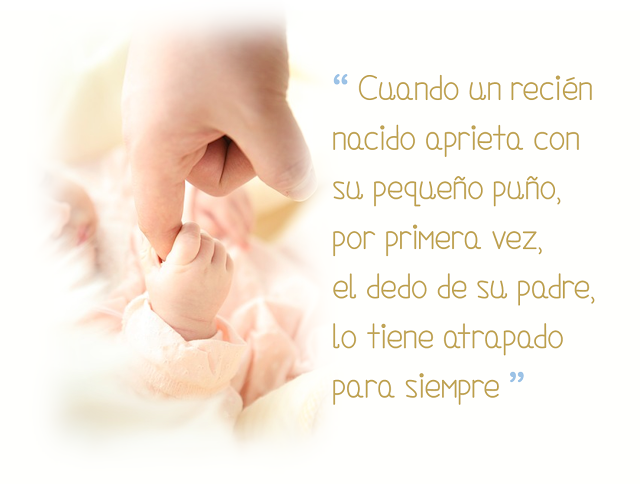 Frase Célebre Sobre Padre E Hijo Papá Primerizo Futuro Papá Frases Para Padres