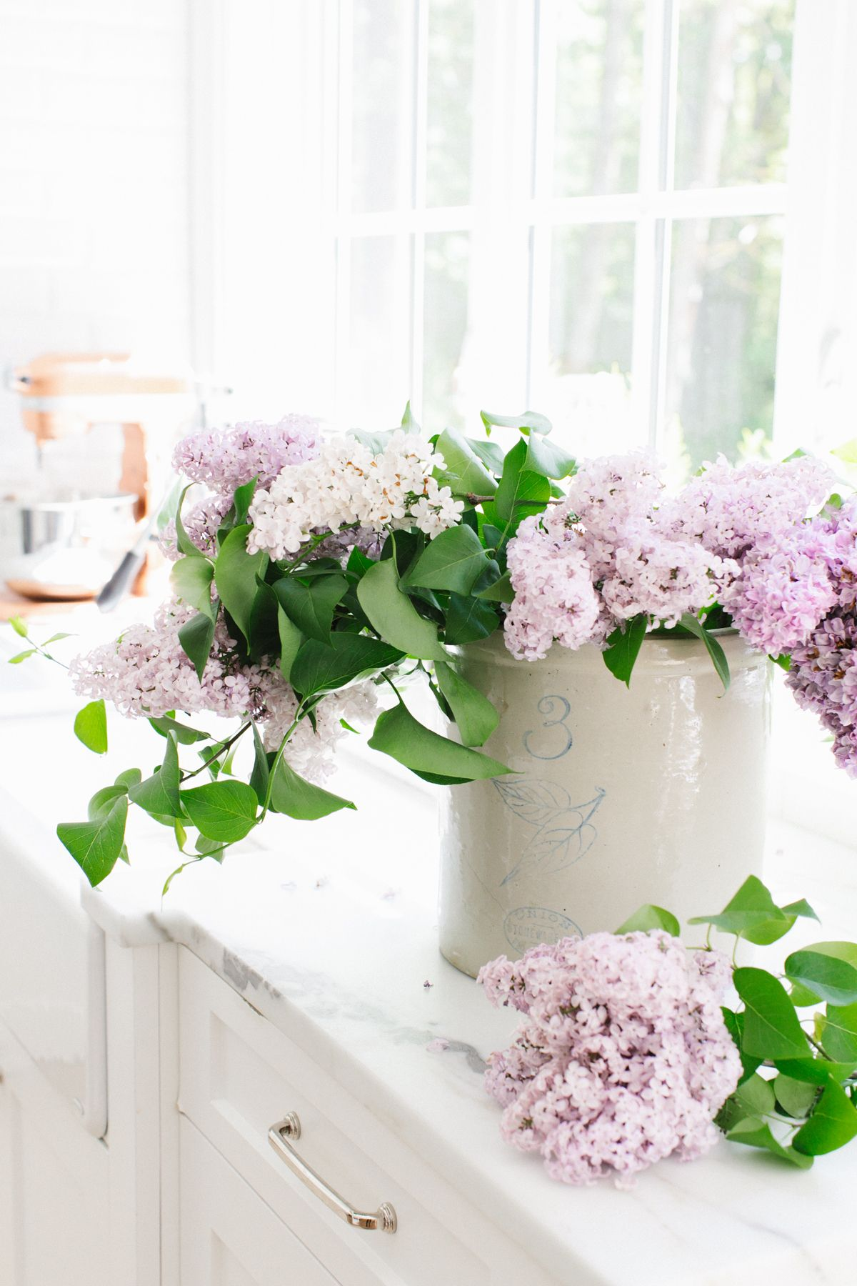 Best Simple Lilac Scones Lilac Lilac Tree Grey Kitchen Designs 640 x 480