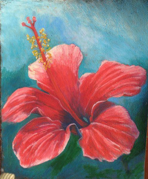 Oil Pastel Flower Google Search Oil Pastel Art Flower