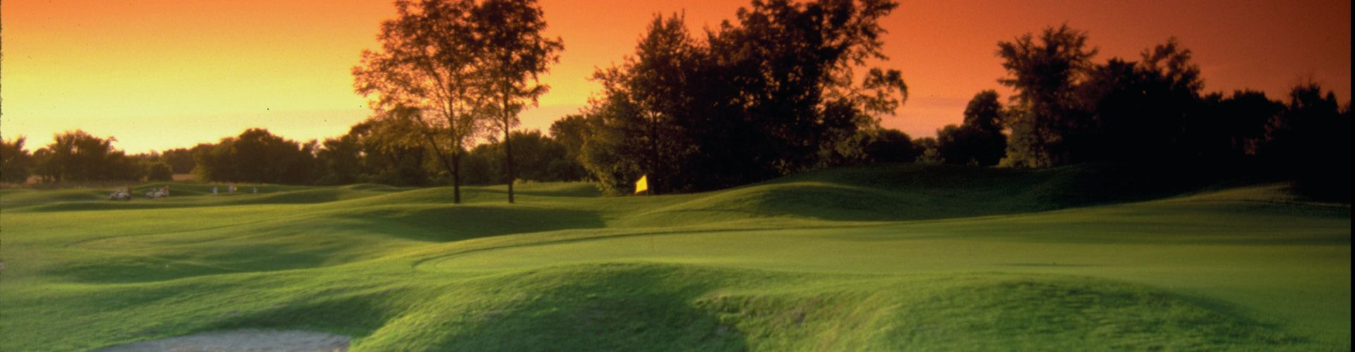 golden fox plymouth michigan golf course information and reviews. Black Bedroom Furniture Sets. Home Design Ideas