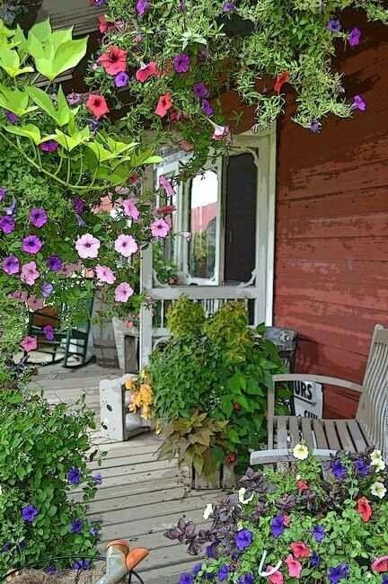 A l'abri, sous les fleurs
