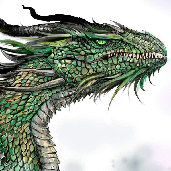 by SpitFire Illustrations | Dragons | Pinterest