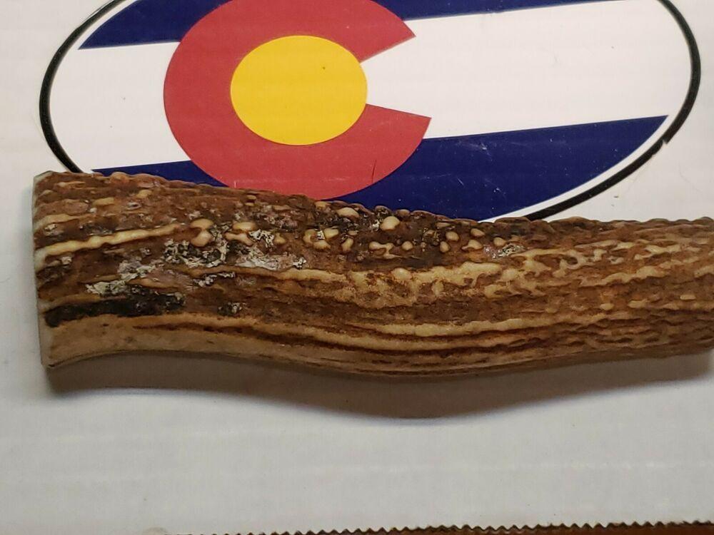 Elk antler knife handle scales craft piece top shelf 5