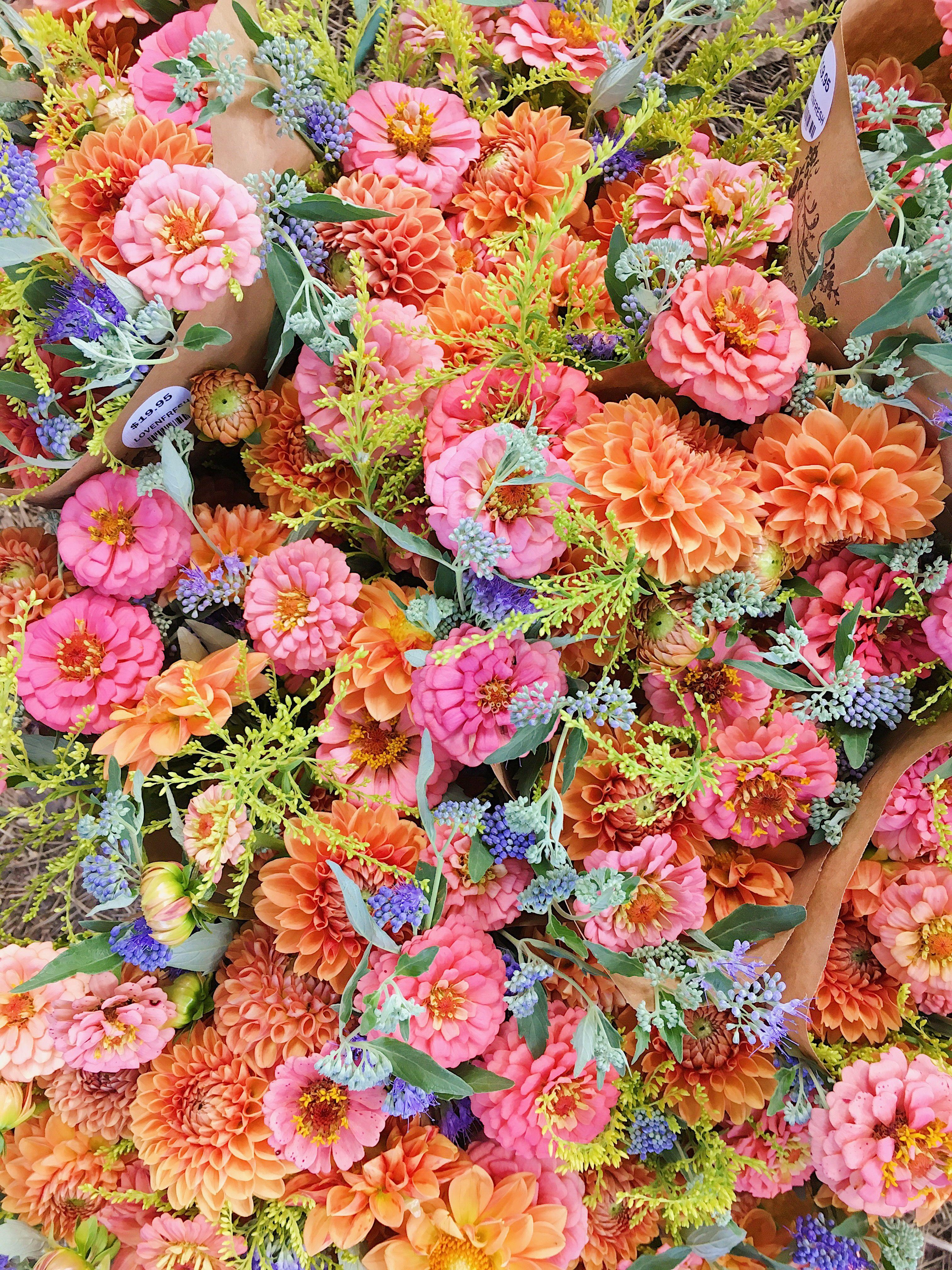 Organic Flower CSA Love 'n Fresh Flowers Flower farm