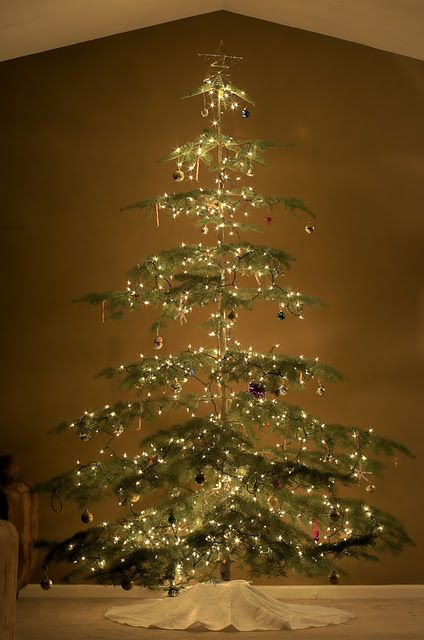 Sparse Christmas Tree Types.The Perfect Charlie Brown Style Tree I Will Have This One