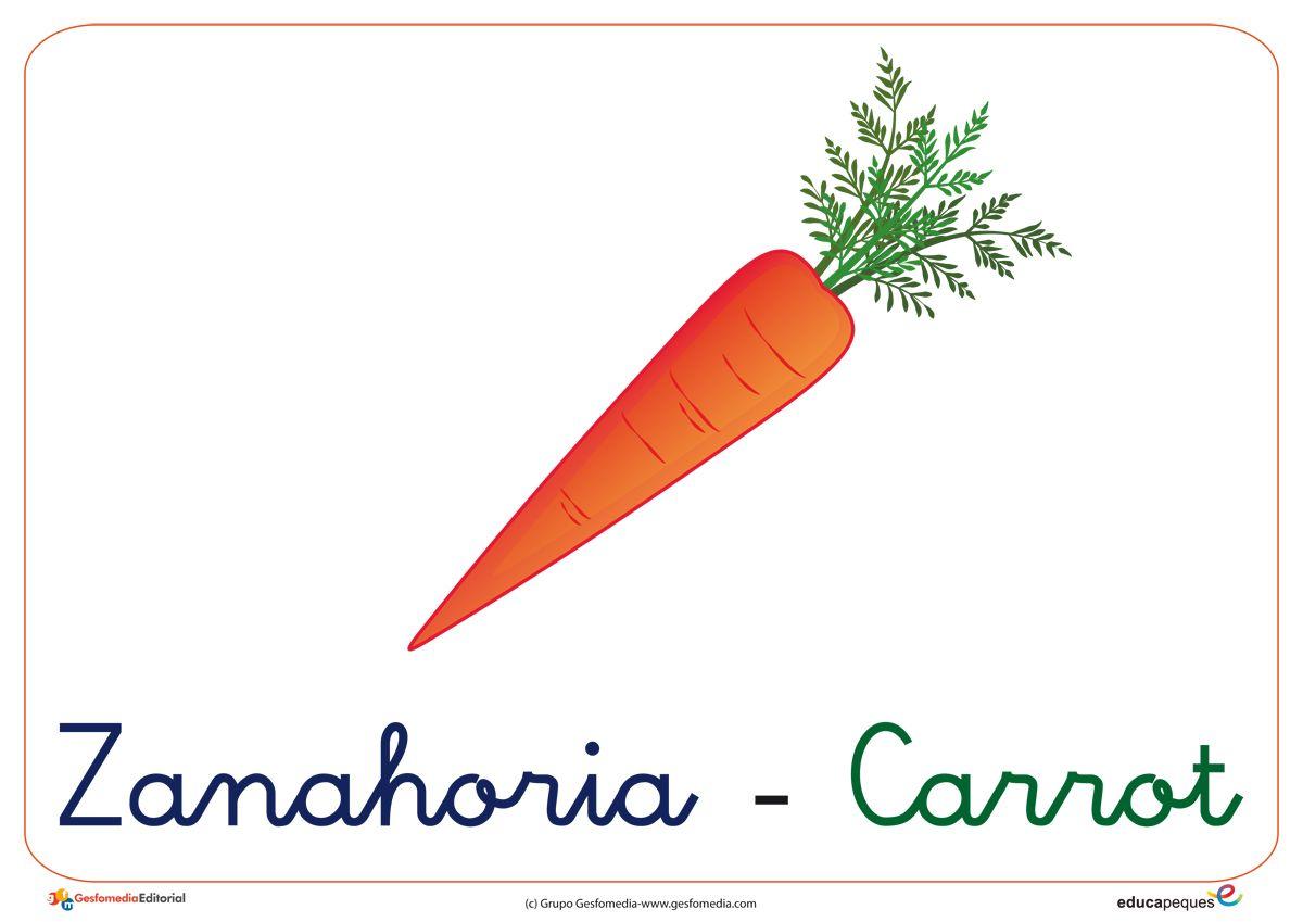 Zanahoria En Ingles / Curso de ingles gratuito con certificacion, clases de inglés gratis en internet, lecciones de inglés multimedia para estudiantes y profesores, recursos profesores de ingles, om personal english.