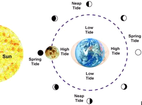 Ocean Tide Diagram Images My Lil Skywalkers Pinterest Diagram