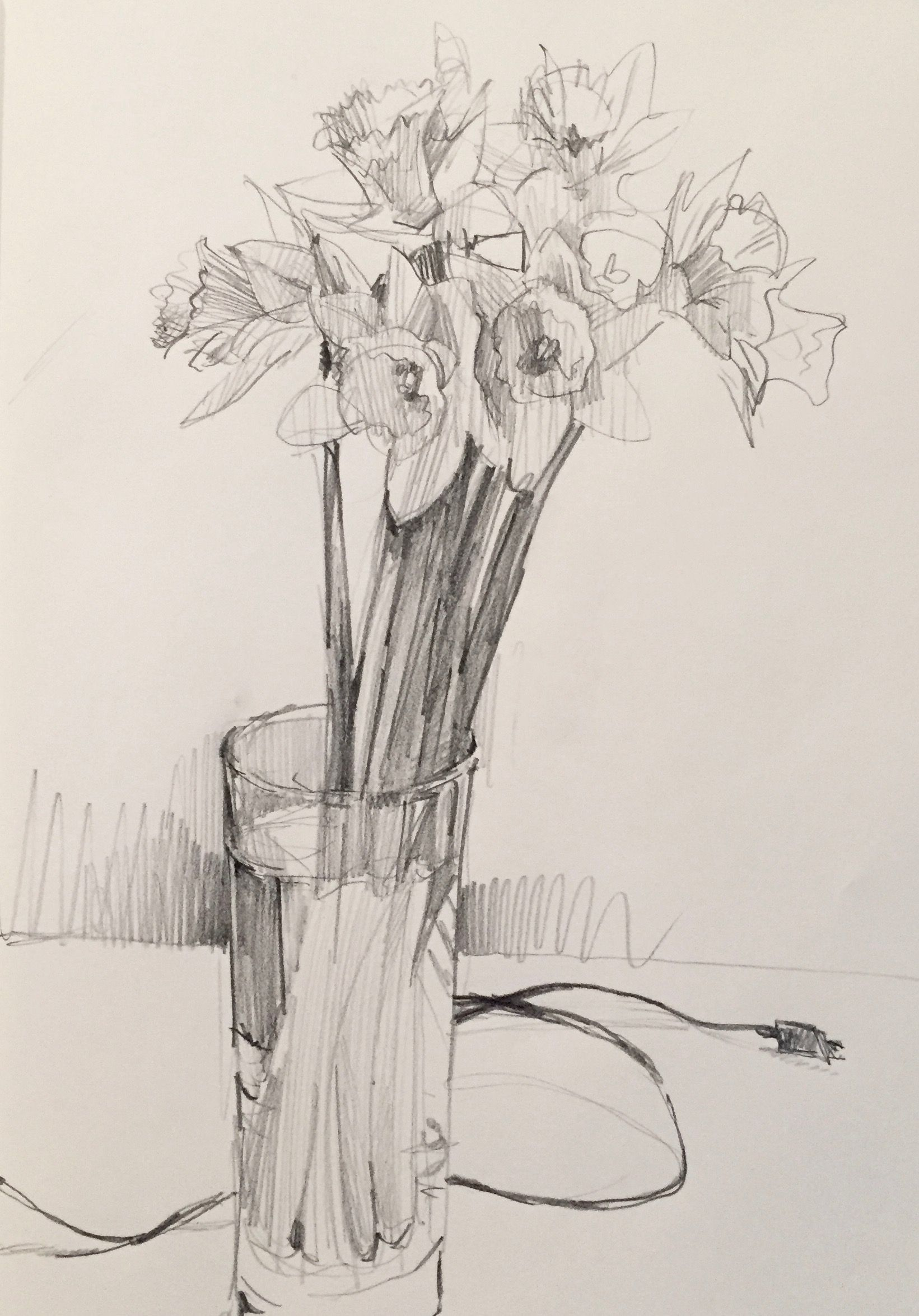 daffodils. #sketch #sketchbook #drawing #art by Sarah Sedwick. 3.19.16.