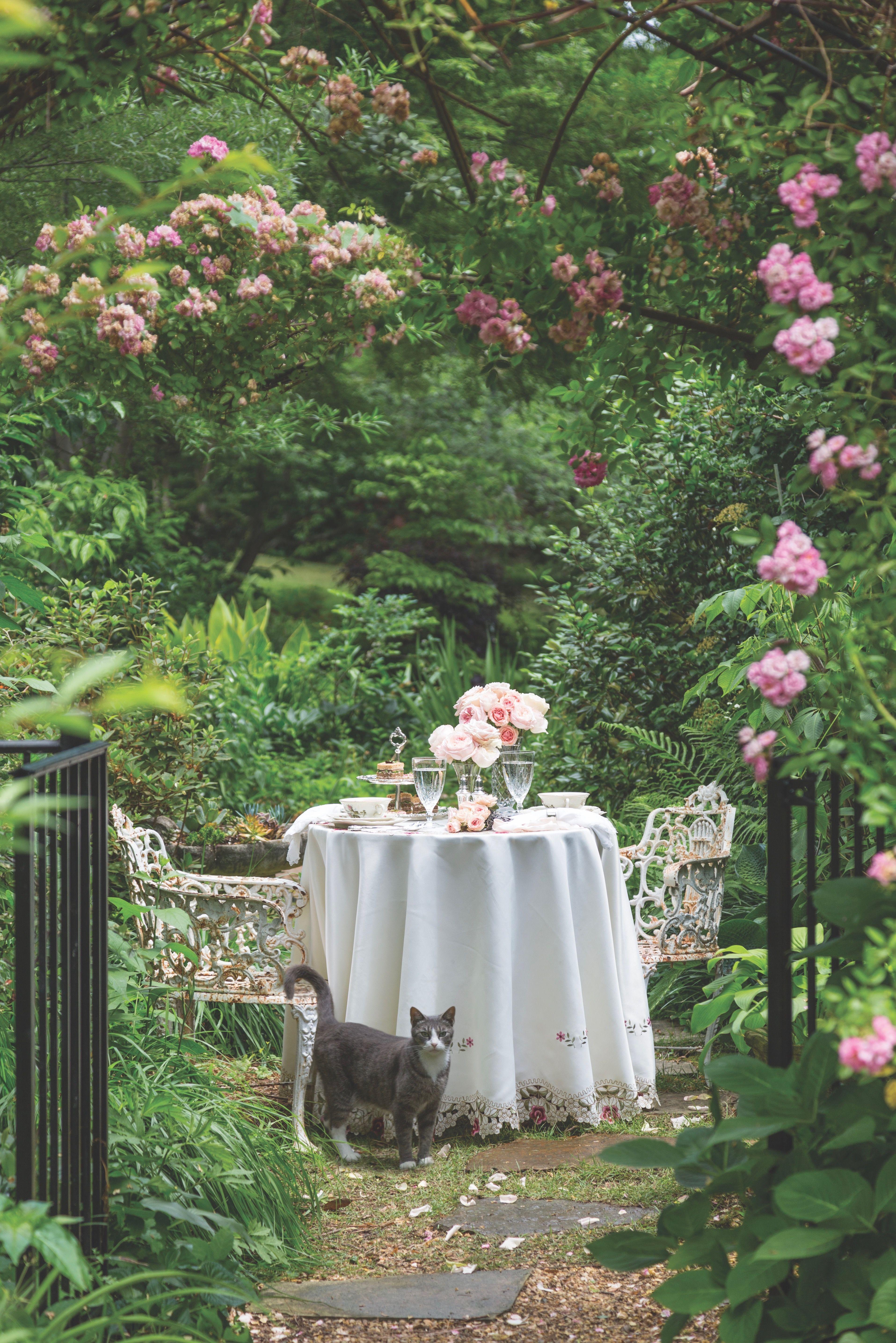 Taking Tea With Mother Jardin Romantique Jardin Naturel Et