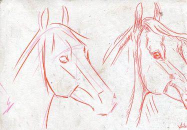 Comment dessiner conseils techniques et m thodes pour savoir comment dessiner un cheval - Comment dessiner un cheval au galop ...