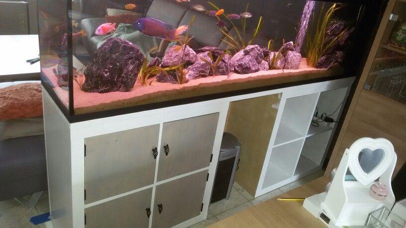 Aquarium Met Landelijke Kast Aan Het Maken Aquarium