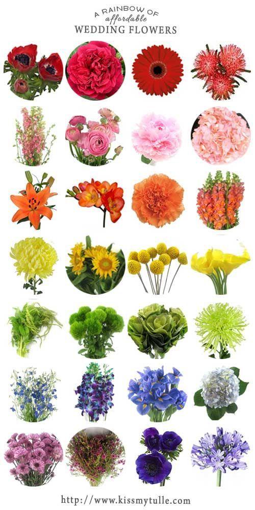 Ein Regenbogen von erschwinglichen Hochzeitsblumen #ceremonyflowers