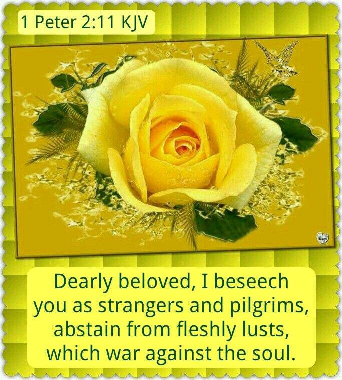 1 Peter 2:11 KJV