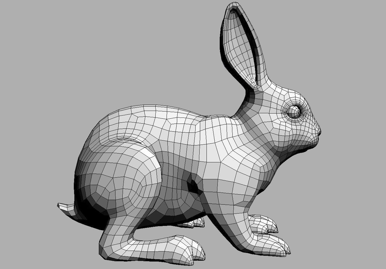 3d Model Rabbit 3d Model Character Rabbit Anatomy Animal Drawings