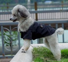 I found some amazing stuff, open it to learn more! Don't wait:https://m.dhgate.com/product/pet-clothes-dog-clothing-spring-wholesale/256716666.html