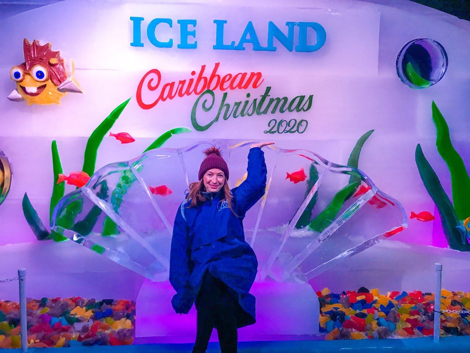 66074676179761b98f7e5eb29d1dbd3c - Moody Gardens Iceland And Festival Of Lights