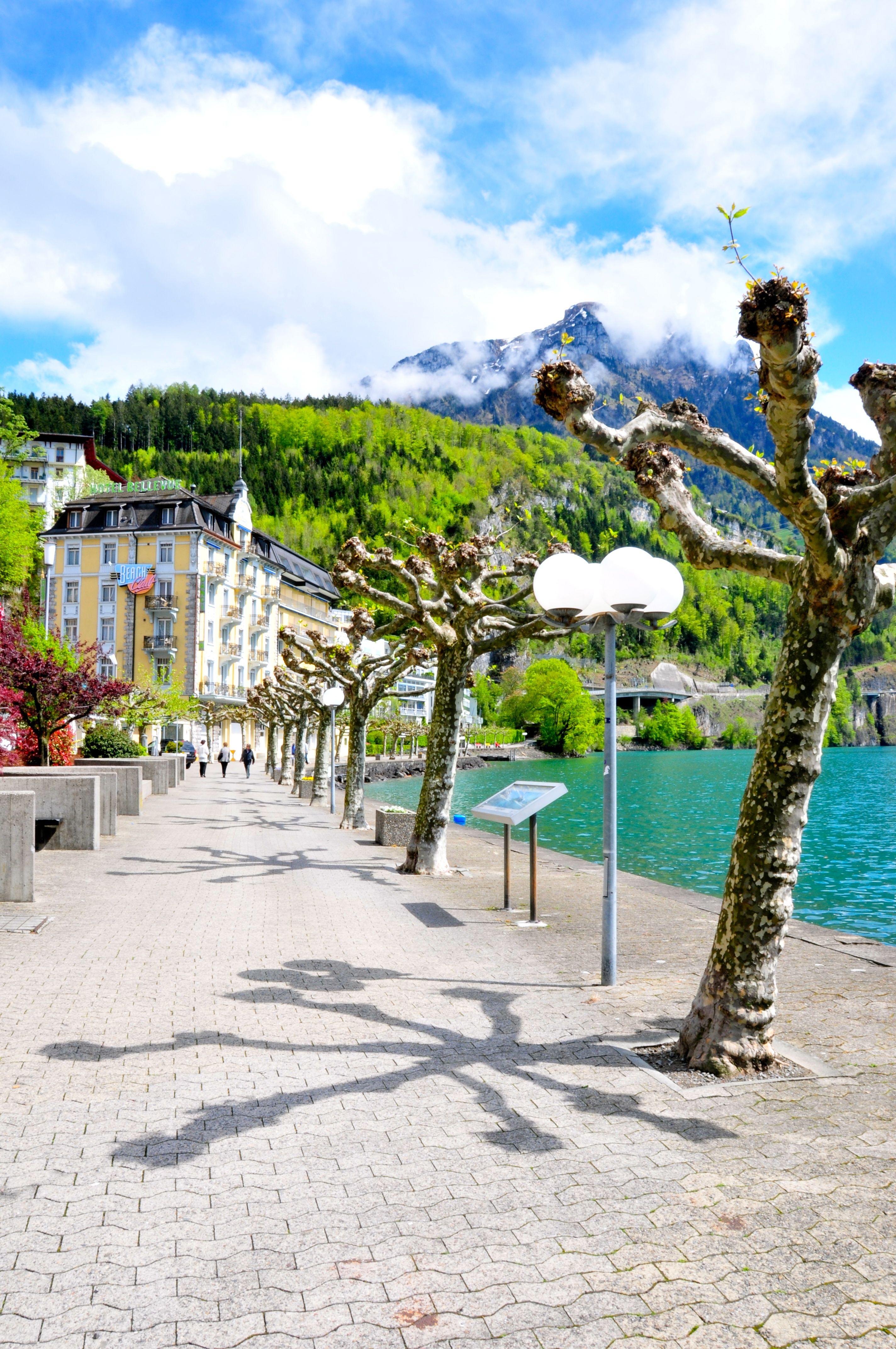 Quaianlage Am Vierwaldstattersee In Brunnen Schwyz Switzerland