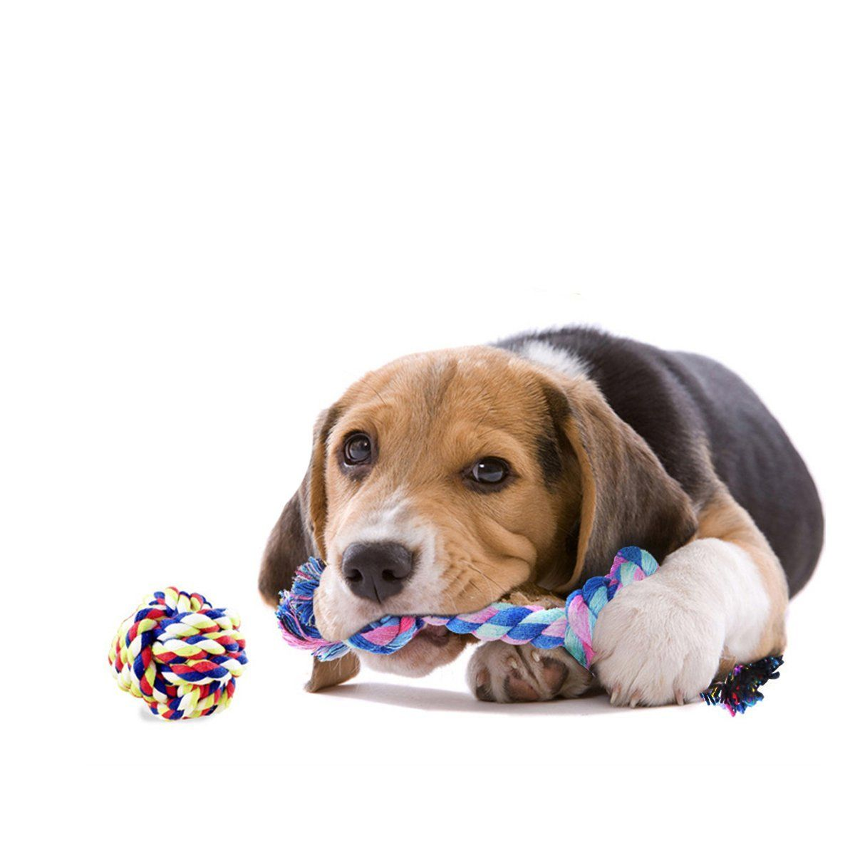 Pet Supplies Dog Rope Toys Dog Teething Toys Best Chew Toys For Teething Puppy 12 Pcs Gift Set Amazon Com Dog Toys Dog Teething Toys Chew Toy