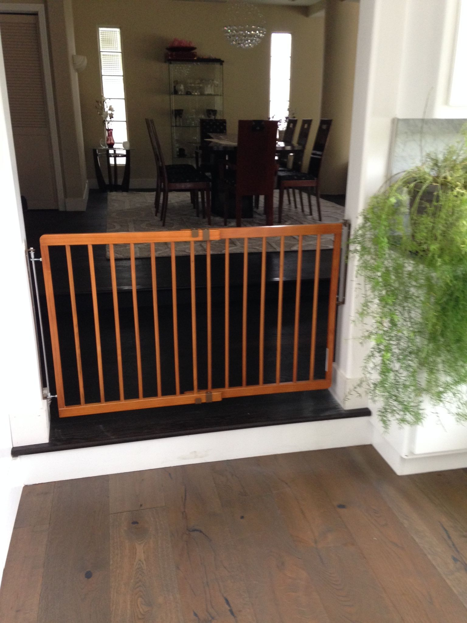 Pin by Be Safe Baby Proofers on Gates Outdoor spaces