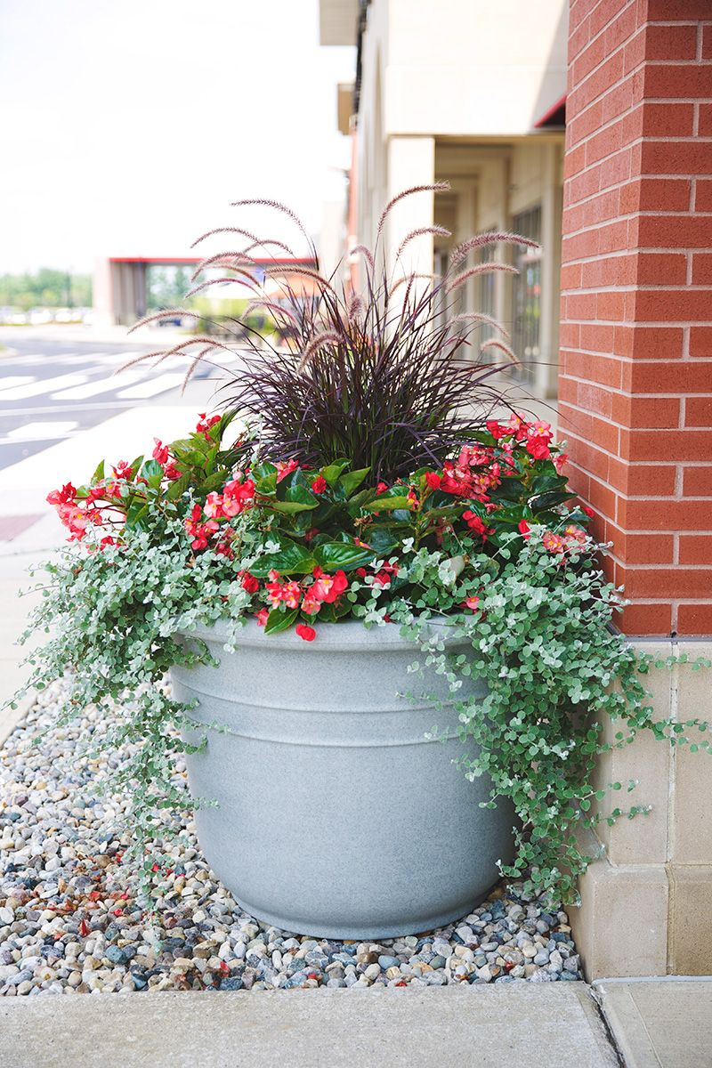 NewPro Containers Bell Tower planter (With images