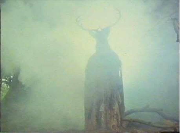 Misty Herne