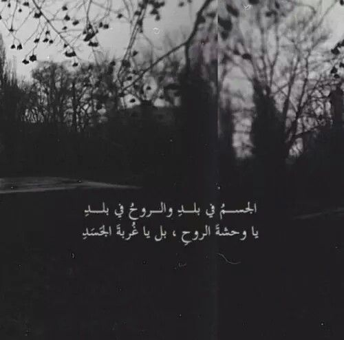 Pin by NAIROUZ on I miss you | Arabic quotes, Quotes