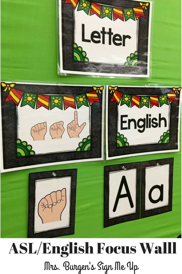 focus wall asl and english slp on tpt special education too rh pinterest ca