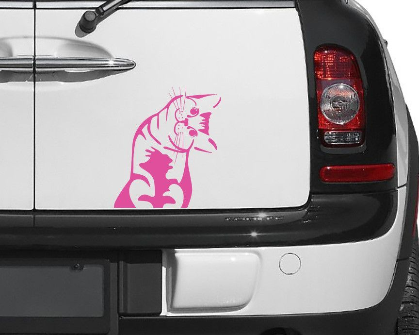 CAR Cat Whatcha Doin I Can Haz Car Vinyl Decal - Vinyl decal stickers canada