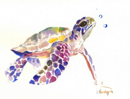 Baby Sea Turtle Watercolor Sea Turtle Painting 12 X 9 In Sea