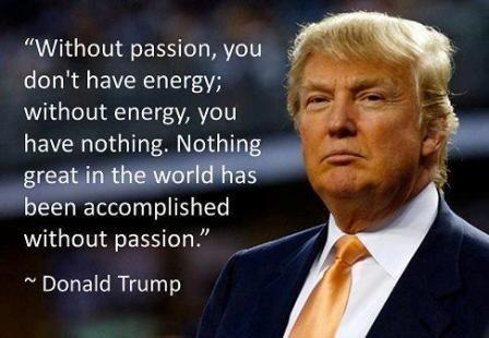 Donald Trump Quotes Pinterest Donald Trump Donald Trump Awesome Donald Trump Quotes