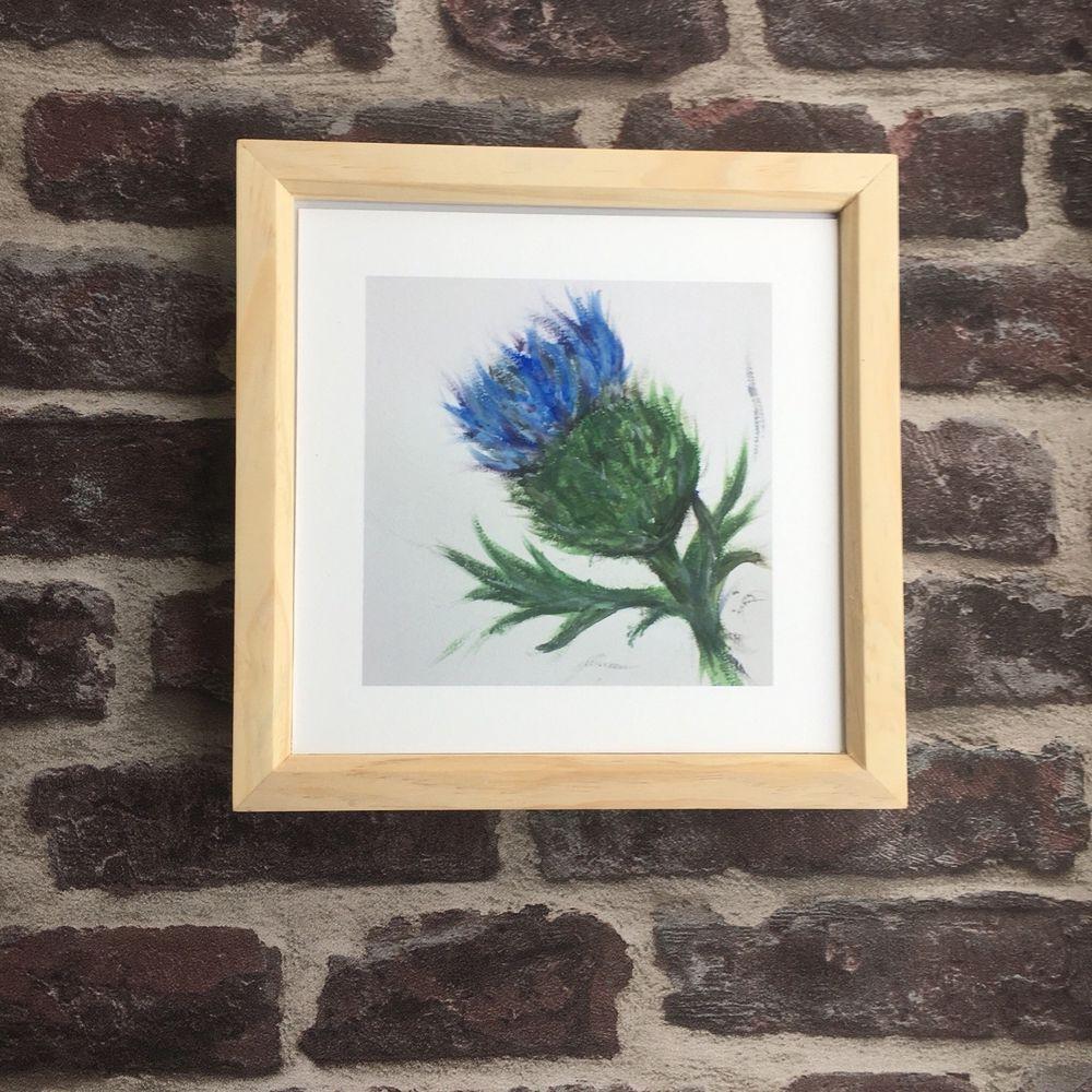 Blue Thistle Framed Print 8 X 8 20 X 20 Cm Pine Frame Scottish Wall Art Ebay With Images Thistle Painting Scottish Painting Thistles Art
