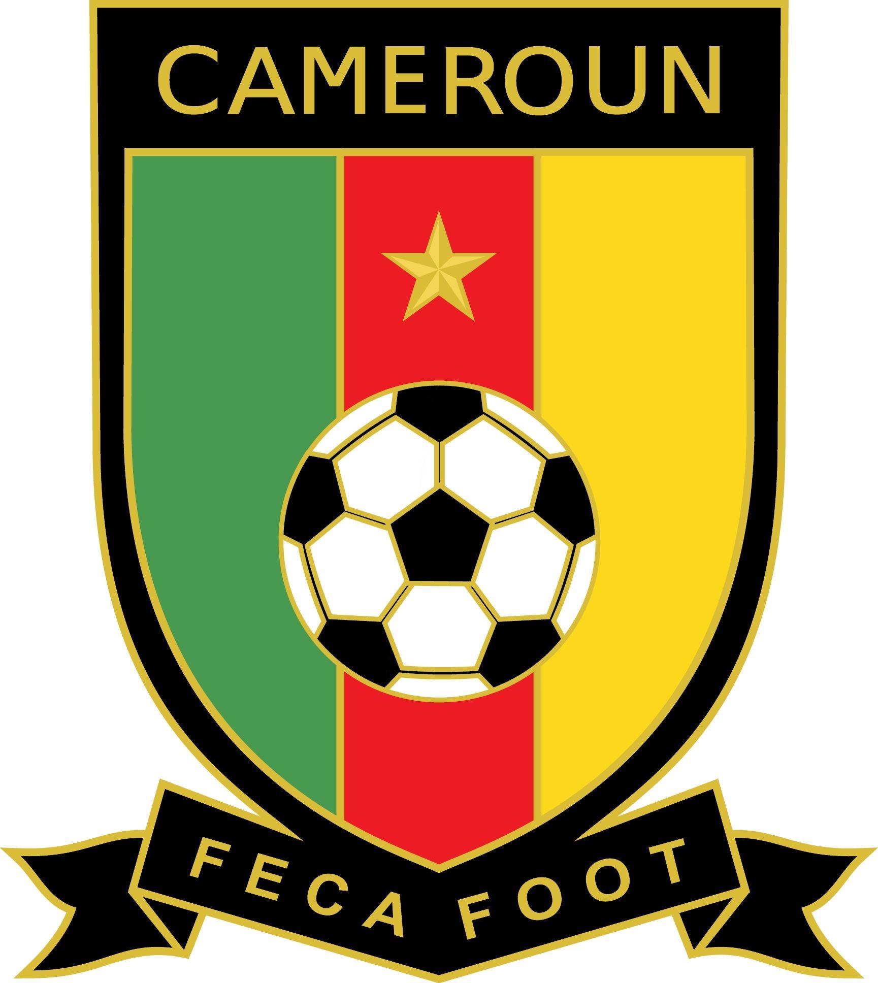 Federation camerounaise de football cameroon national